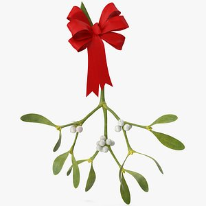 Mistletoe 1 with Red Bow 3D model