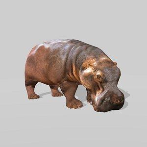HIPPO OBJ 3D