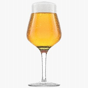 3D Beer Glass  5