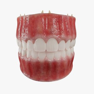 3D gums teeth tongue