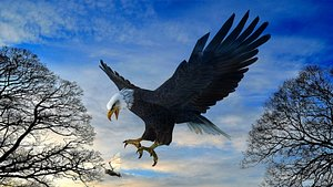 Eagle Attack 3D model