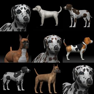 Dog Rigged Collection 3D model