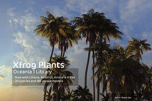 oceania trees xfrogplants 1 3d model