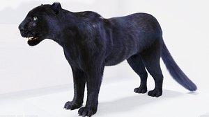 3D model fur black panther