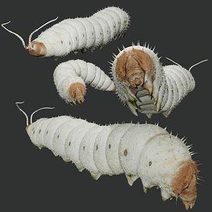 3D model silkworm rigged