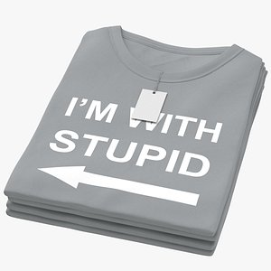 Female Crew Neck Folded Stacked With Tag Gray Im With Stupid 02 3D model