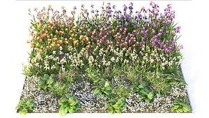 Flowerbed 7 3D