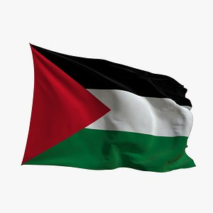 3D Realistic Animated Flag - Microtexture Rigged - Put your own texture - Def Palestine