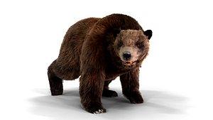 3D bear fur animation
