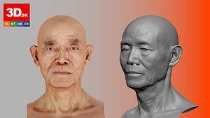 ReRetopologized Head scan Ike Hidetsugu 3D model