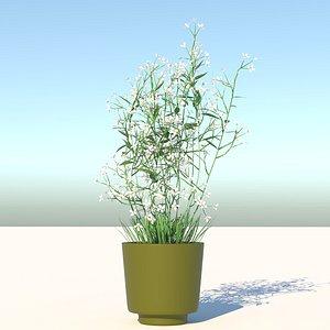 3D plant prairie