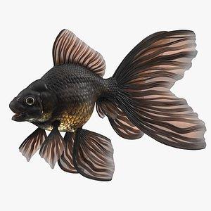 Black Moor Goldfish Rigged for Maya model
