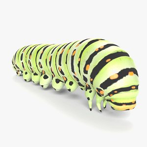 caterpillar nature insect 3D model