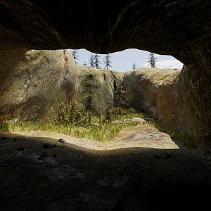 3D photorealistic cave vegetation terrain