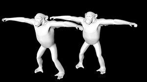 chimpanzee model