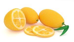 kumquat 3D model