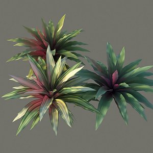 XfrogPlants Boat Lily - Tradescantia Spathacea 3D