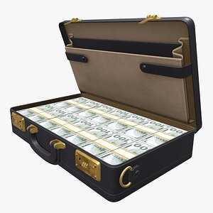 Briefcase With Money 3D