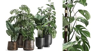 3D model Houseplants in a rusty flowerpot for the interior 999