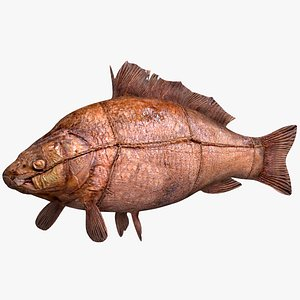 3D Fried Crucian model