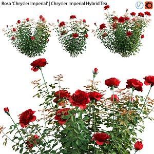 3D model Rosa Chrysler Imperial - Rose 01