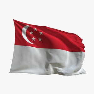 3D Realistic Animated Flag - Microtexture Rigged - Put your own texture - Def Singapore