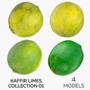 3D Kaffir Limes Collection 01 - 4 models