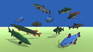 fish fresh water 3D model