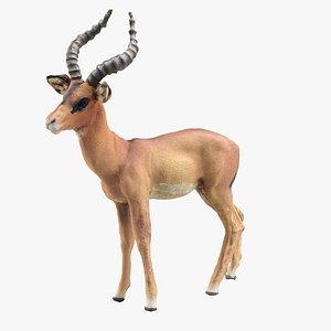 deer mammal animal 3D model