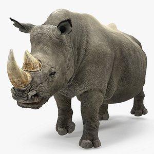 3D model adult rhino fur rigged