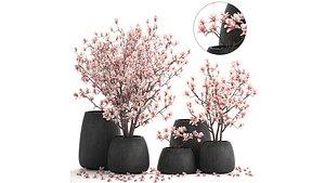 3D model flower pot trees