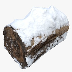 tree stump snow 3D