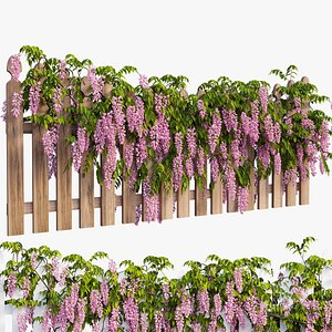wisterial plant 3D model