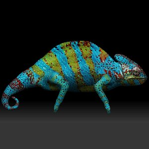 Colored Chameleon 3D model