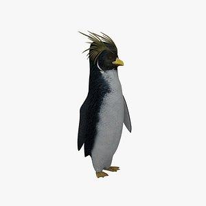 cody maverick penguin animation 3D model