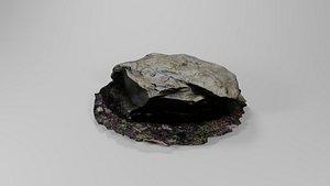 Big Scanned Rock 3D model
