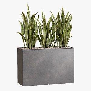 3D Pot plant Kado model