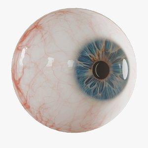 3D Photorealistic human eye model