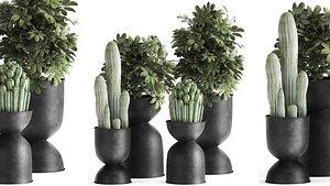 3D plants interior pots