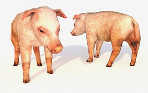 pig animations natural 3D model