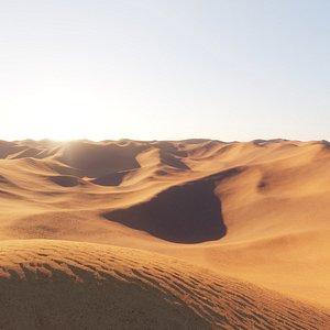 desert environment model
