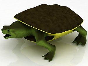 3D Loggerhead Sea Turtle