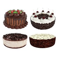 Chocolate cake collection
