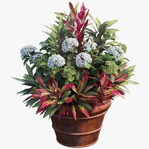 hydrangea plant planters 3D model