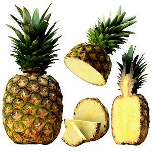3D model Pineapple PBR