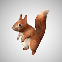 Realistic Rigged Low Poly Squirrel