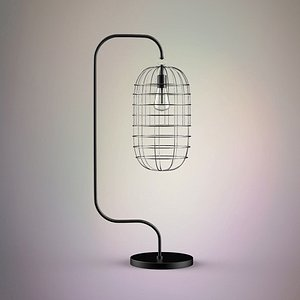 3D cage lamp