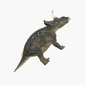 3D Diceratops model