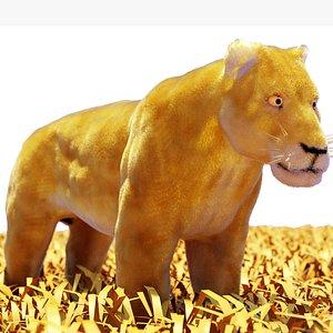 lion female 3D