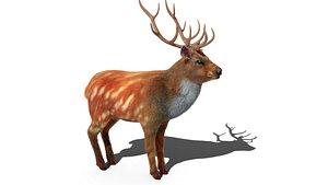 3D Fur Red Deer Stag NO RIG model